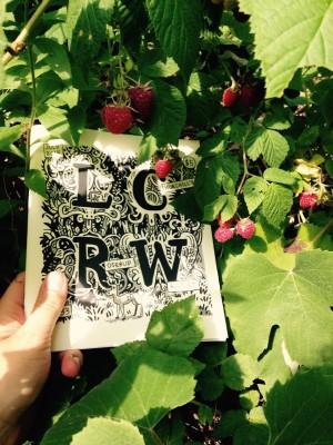 LCRW 33 in my mom's raspberry patch