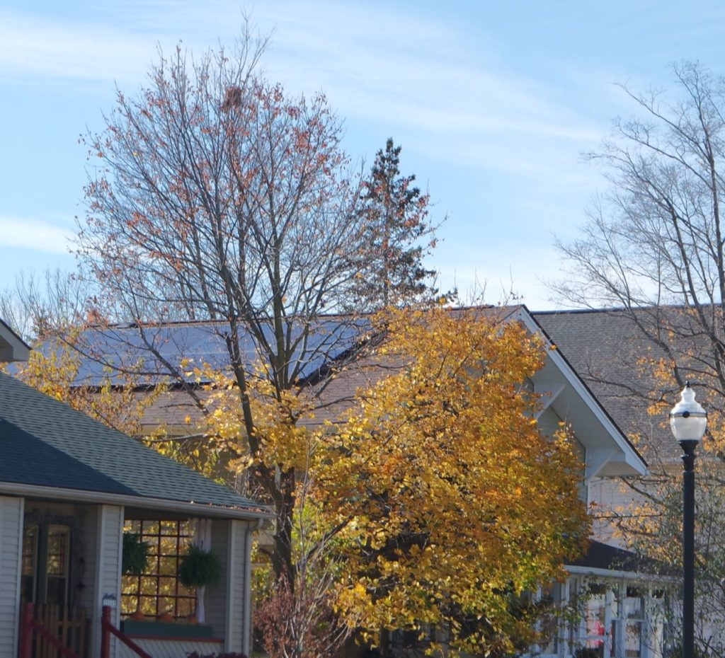 Remember those solar panels I was all excited about back in January?